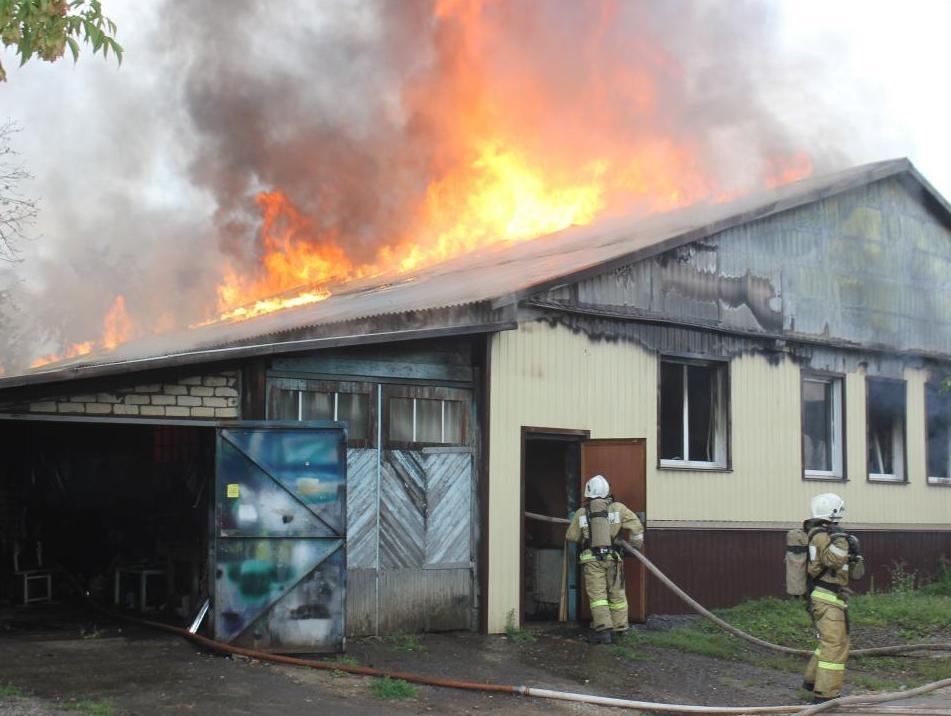 Залето мордовские пожарные 194 раза вступали вборьбу согненной стихией
