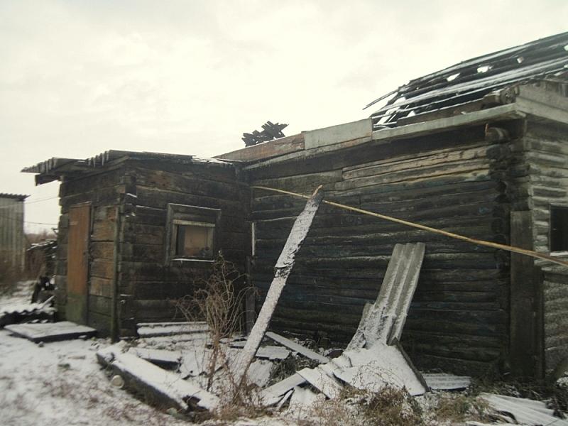 ВМордовии пожар вжилом доме забрал жизни матери исына
