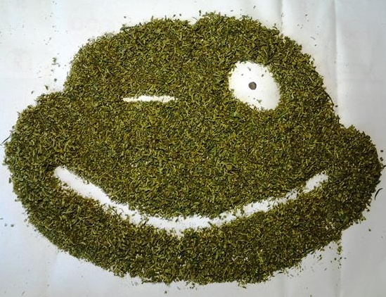 Гражданин Мордовии выращивал наркотики вшкафу