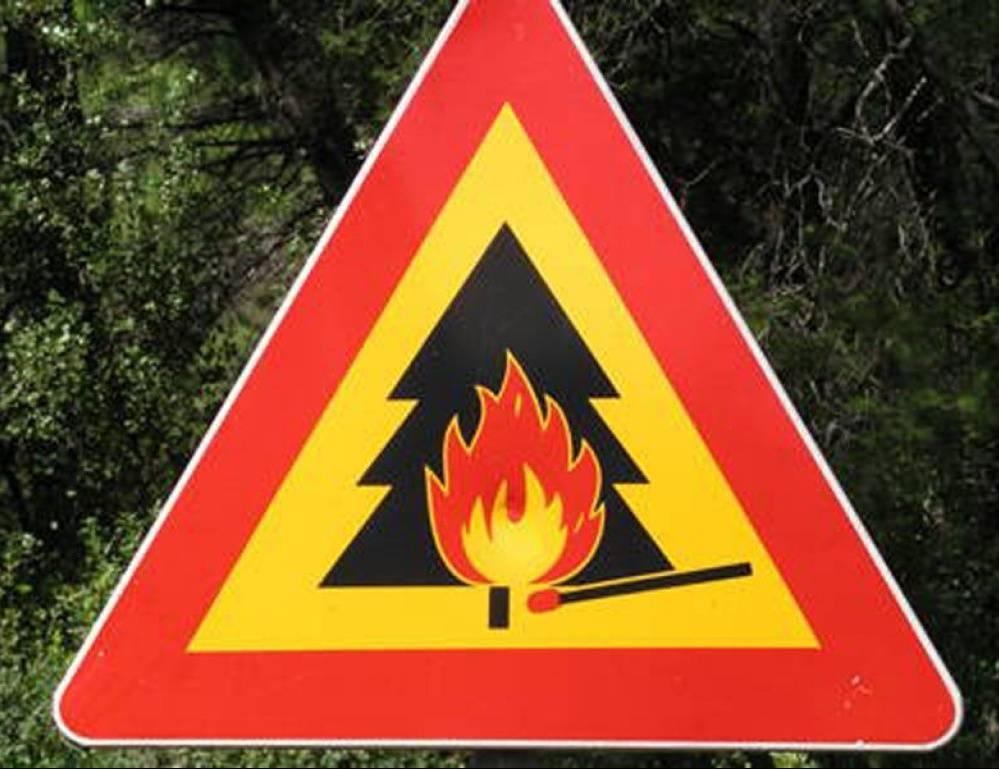 ВМордовии введен особый противопожарный режим