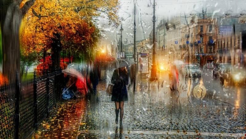 Выходные вКостромской области будут дождливыми