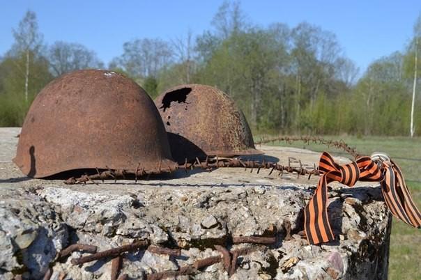 «Никто незабыт»: вПриволжском федеральном округе прошел окружной слет поисковых отрядов