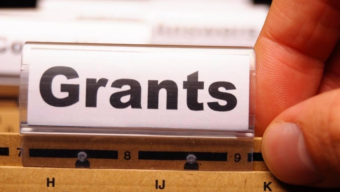 Семь мордовских проектов получат президентские гранты на5,6 млрд руб.