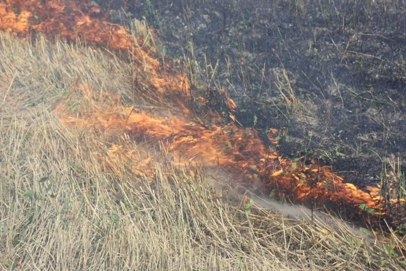 Спасатели осуществили 8 выездов для тушения сухой травы