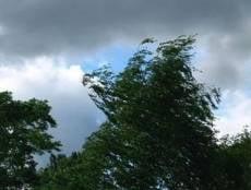 На Мордовию снова обрушится сильный ветер