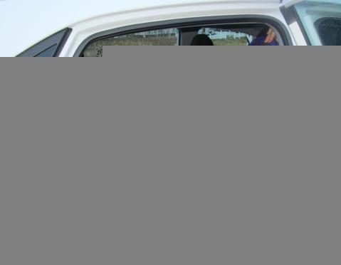 За три дня сотрудники ГИБДД наказали 80 родителей-водителей