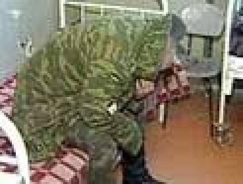 В рамках прошедшей призывной кампании из Мордовии в армию было отправлено рекордное количество уклонистов