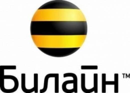 «Билайн» в Саранске подвел итоги работы сети в новогодние праздники