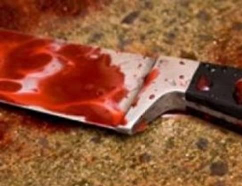 В Мордовии рецидивистка ответит за кровавое убийство и кражу