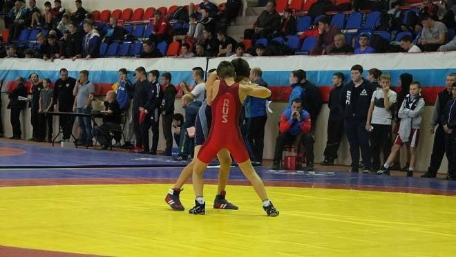 Семь юных мордовских борцов завоевали путёвки на первенство России