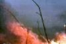 Мордовия не вошла в число регионов, где объявлен особый режим в связи с угрозой пожаров