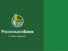 Россельхозбанк направил на развитие малого бизнеса порядка 194,3 млрд рублей