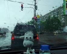 В Мордовии ожидаются сильные дожди