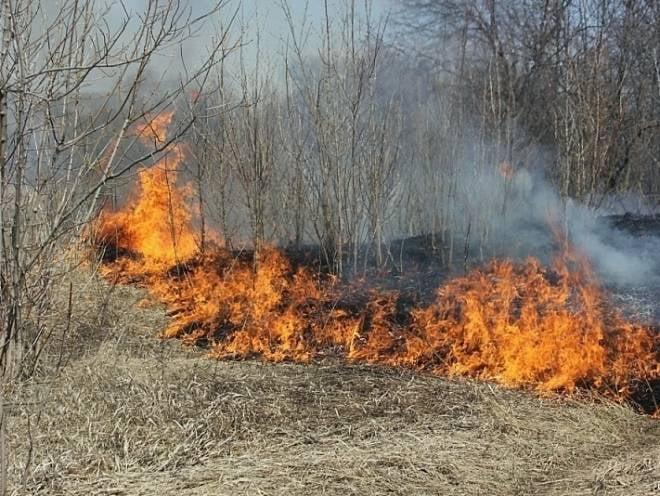 В Мордовии май оказался «горячим» для пожарных