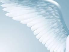 Ангел на дорогах Ковылкино направил пешеходов на верный путь