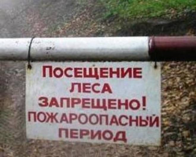 Жители Мордовии не смогут на майские праздники разводить костры на природе
