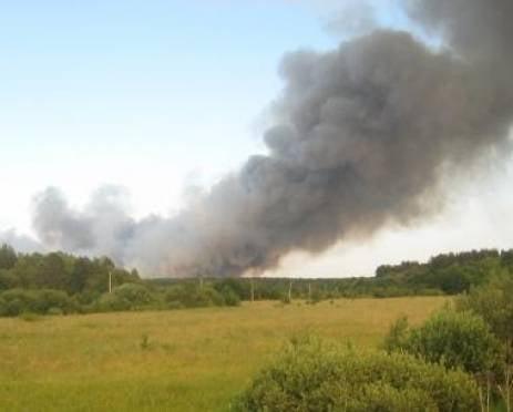 Готовность Мордовии к пожароопасному периоду оценит федеральная комиссия