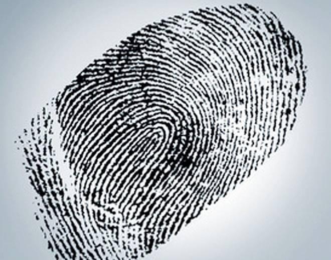 В России предложили собрать отпечатки пальцев у всех без исключения