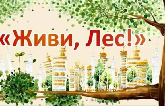Каждый житель Мордовии может внести вклад в сохранение леса