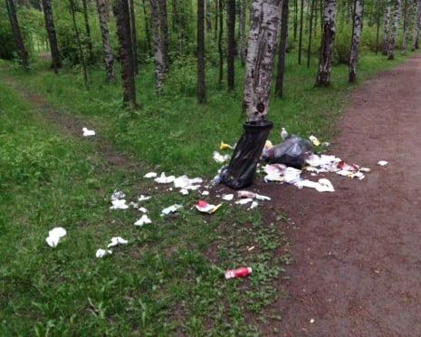 В Саранске лесопарки очищают от мусора силами неравнодушных