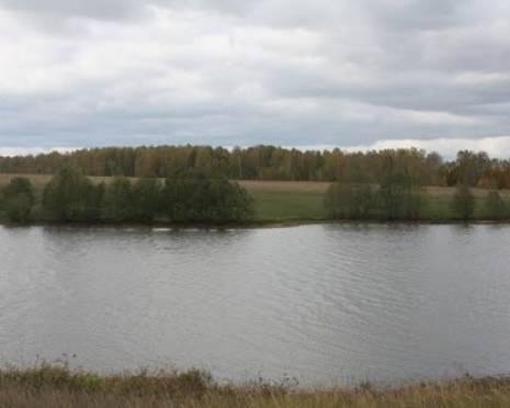 В Мордовии утонул 6-летний ребенок