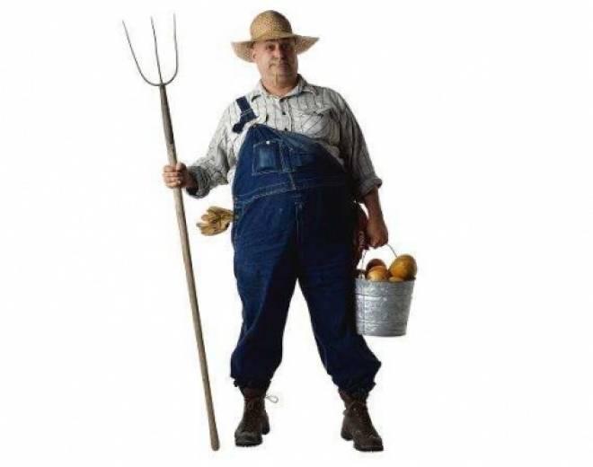 Мордовских фермеров поддержат рублем