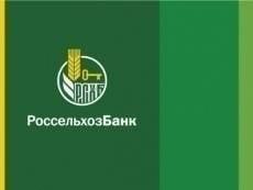 Россельхозбанк приступил к кредитованию посевной в Мордовии