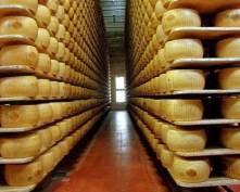 Сыроваренный завод «Сармич» в Мордовии намерен потеснить зарубежных конкурентов
