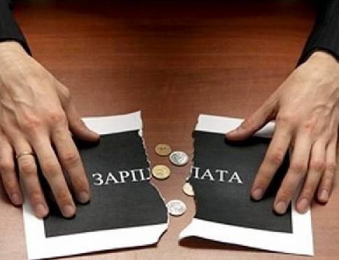 В этом году реальная зарплата россиян снизилась на 8-9%