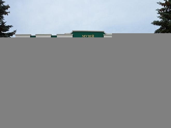 Михаил Бабич оценил инновационность музея им.Эрьзи