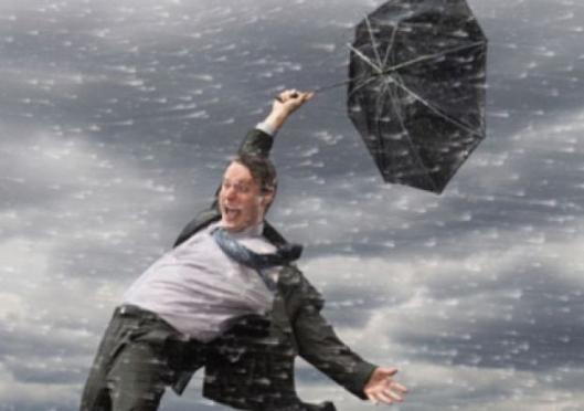 МЧС: скорость ветра в Мордовии может превысить 25 м/с