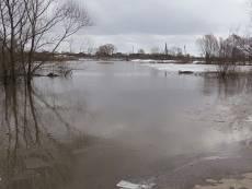 Трое жителей Русского Маскино чуть не утонули в разлившейся реке