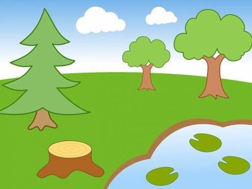 Внимание жителей Мордовии привлекут к «лесным» проблемам