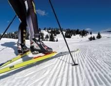 Юные мордовские спортсмены поборются за медали на норвежской лыжне