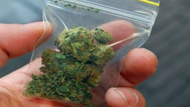 У трех мужчин в Мордовии полицейские нашли около 80 граммов марихуаны