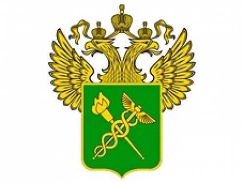 Наркополицейских Мордовии командировали в Сочи