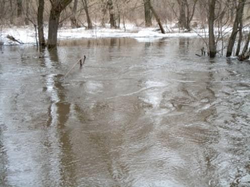 МЧС Мордовии: ситуация с паводком в республике не критична