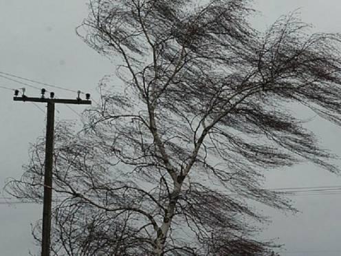 В Мордовии ожидается разрушительный ветер