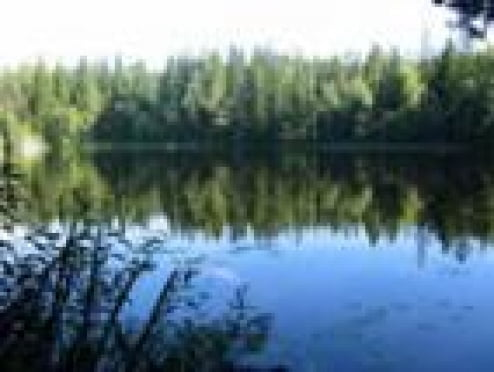 Итоги купального сезона в Мордовии: 22 утопленника