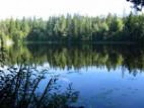 За минувшие выходные на водоемах Мордовии погибло три человека