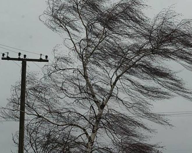 В Мордовии из-за ветра обесточены еще два населенных пункта