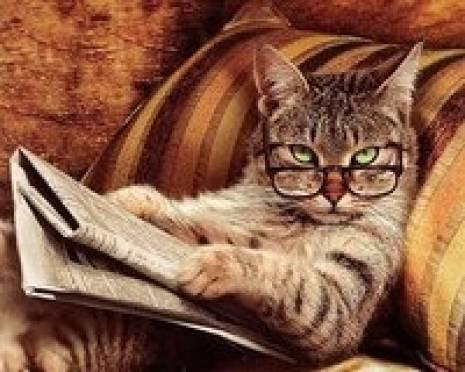 Жители Мордовии стали меньше читать периодику