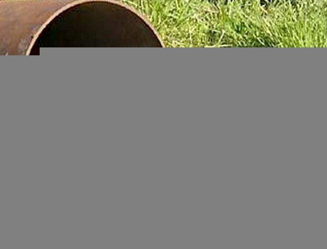 В Саранске отыщут виноватых в загрязнении рек