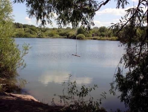 В Саранске утонул 14-летний школьник, упав в пруд с тарзанки