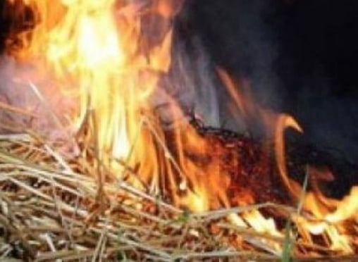 Житель Мордовии сжег 7 тонн соседского сена