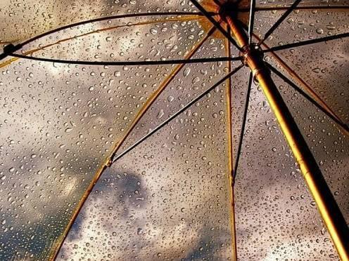В выходные в Мордовии продолжатся дожди