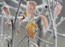 Зима в Мордовии начнётся со слабого «минуса» за окном