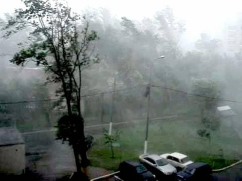 Сегодня на Мордовию обрушится порывистый ветер