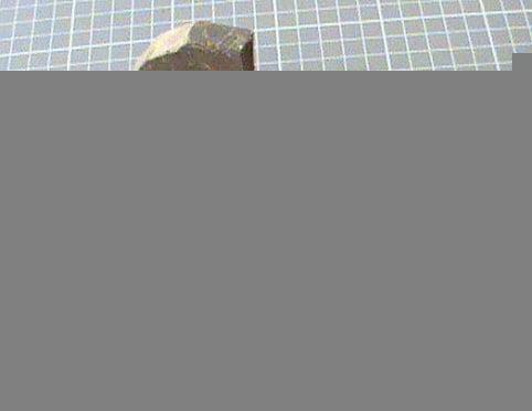 В Мордовии у сотрудника следственного изолятора нашли 24 грамма гашиша