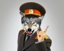 В Саранске будут судить оборотня в погонах
